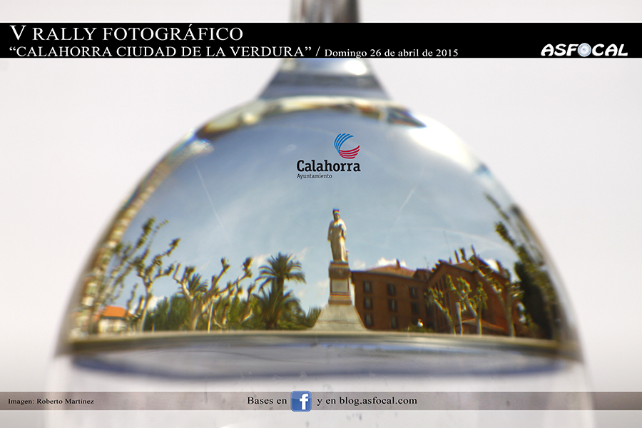 CatelVRallyVerduras2015_web